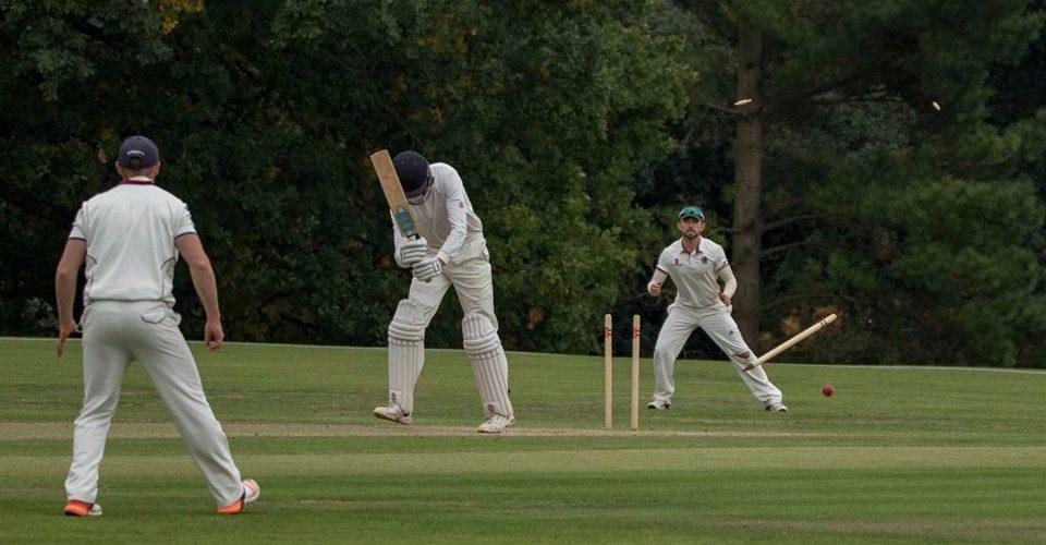 Shaw wicket